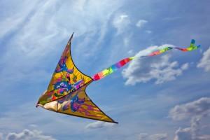 stockvault-kite133288